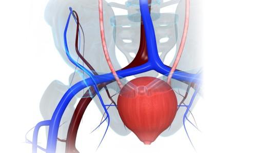 Утолщение стенок мочевого пузыря причины лечение